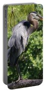 Great Blue Heron Vii Portable Battery Charger