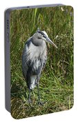 Great Blue Waiting For Prey Portable Battery Charger