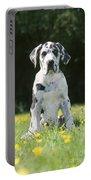 Great Dane Puppy Portable Battery Charger