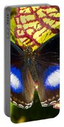 Great Eggfly Butterfly Portable Battery Charger