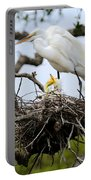 Great Egret Chicks - Sibling Rivalry Portable Battery Charger by Carol Groenen