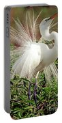 Great Egret Courtship Display Portable Battery Charger
