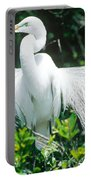 Great Egret Displaying Breeding Plumage Portable Battery Charger