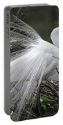 Great Egret Preening Portable Battery Charger