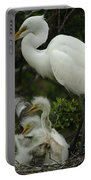Great Egret With Young Portable Battery Charger