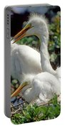 Great Egrets Portable Battery Charger