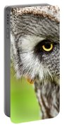 Great Gray Owl Close Up Portable Battery Charger
