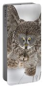 Great Gray Owl Pictures 634 Portable Battery Charger