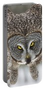 Great Gray Owl Pictures 648 Portable Battery Charger