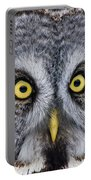 Great Gray Owl Pictures 680 Portable Battery Charger