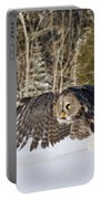 Great Gray Owl Pictures 740 Portable Battery Charger