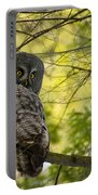Great Gray Owl Pictures 779 Portable Battery Charger