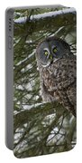 Great Gray Owl Pictures 780 Portable Battery Charger