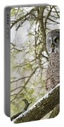 Great Gray Owl Pictures 804 Portable Battery Charger