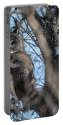 Great Grey In The Woods Portable Battery Charger