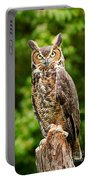 Great Horned Owl Portable Battery Charger