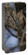Great Horned Owl On Watch Portable Battery Charger