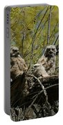 Great Horned Owlets 1 Portable Battery Charger