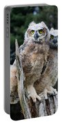 Great Horned Owlets Portable Battery Charger