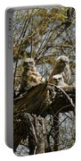 Great Horned Owlets Photo Portable Battery Charger