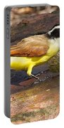 Great Kiskadee Portable Battery Charger