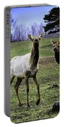 Great Michigan Elk Portable Battery Charger