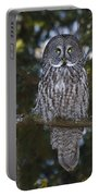 Great Owl Eyes Portable Battery Charger
