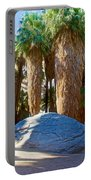Great Sliding Rock In Lower Palm Canyon In Indian Canyons Near Palm Springs-california Portable Battery Charger