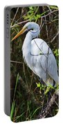 Great White Egret In The Wild Portable Battery Charger