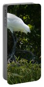 Great White Heron Meeting Portable Battery Charger