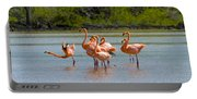 Greater Flamingos Portable Battery Charger