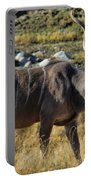 Greater Kudu Grazing Portable Battery Charger