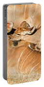 Greater Kudu Mother And Baby Portable Battery Charger
