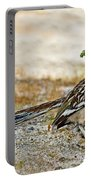 Greater Roadrunner With Nest Material Portable Battery Charger