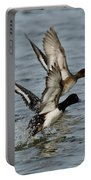 Greater Scaup Pair Portable Battery Charger