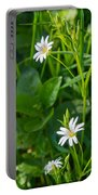 Greater Stitchwort Stellaria Portable Battery Charger