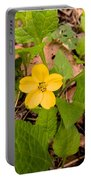 Green And Gold Portable Battery Charger