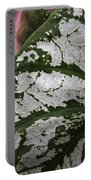 Green And Pink Caladiums Portable Battery Charger