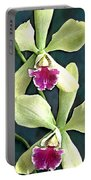Green And Purple Cattleya Orchids Portable Battery Charger