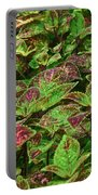 Green And Purple In Nature Portable Battery Charger
