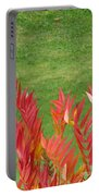 Green And Red Portable Battery Charger
