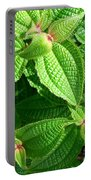 Green And Ruffled Portable Battery Charger