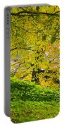 Green And Yellow Portable Battery Charger