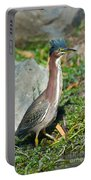 Green-backed Heron Butorides Virescens Portable Battery Charger