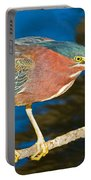 Green-backed Heron Portable Battery Charger