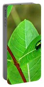 Green Beetle Foraging Portable Battery Charger