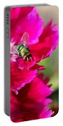 Green Bottle Fly On Dianthus  Portable Battery Charger