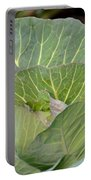 Green Cabbage Portable Battery Charger