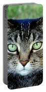 Green Cat Eyes In Summer Grass Portable Battery Charger
