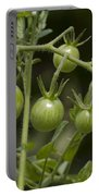 Green Cherry Tomatoes On The Vine Portable Battery Charger